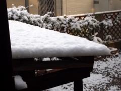 薪小屋の屋根にも雪